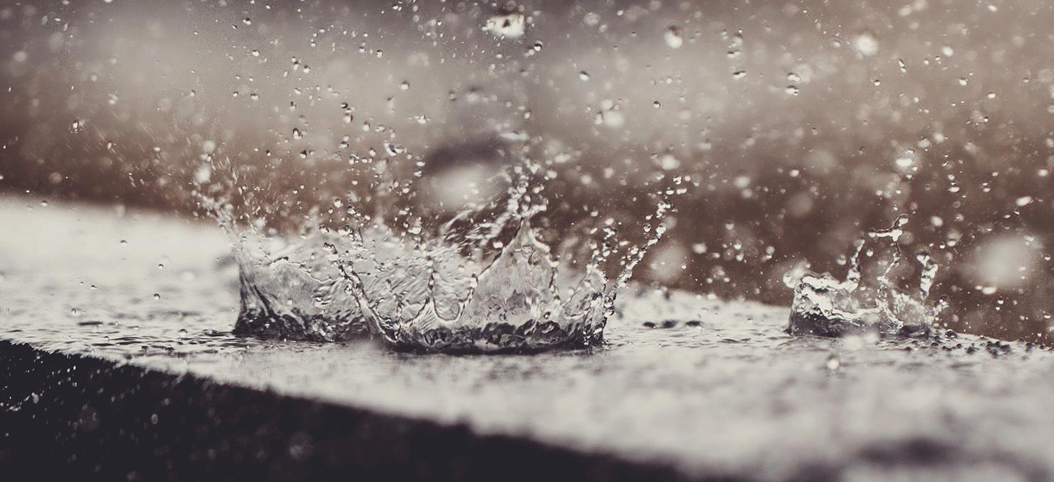 The Mesmerizing Monsoon at Select CITYWALK