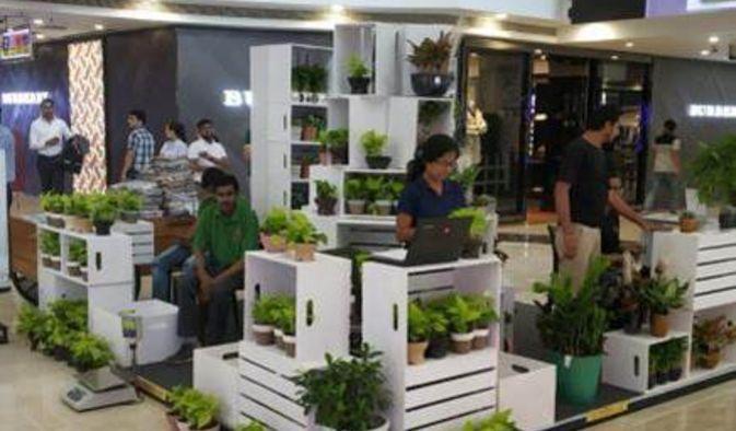 Green Wali Diwali